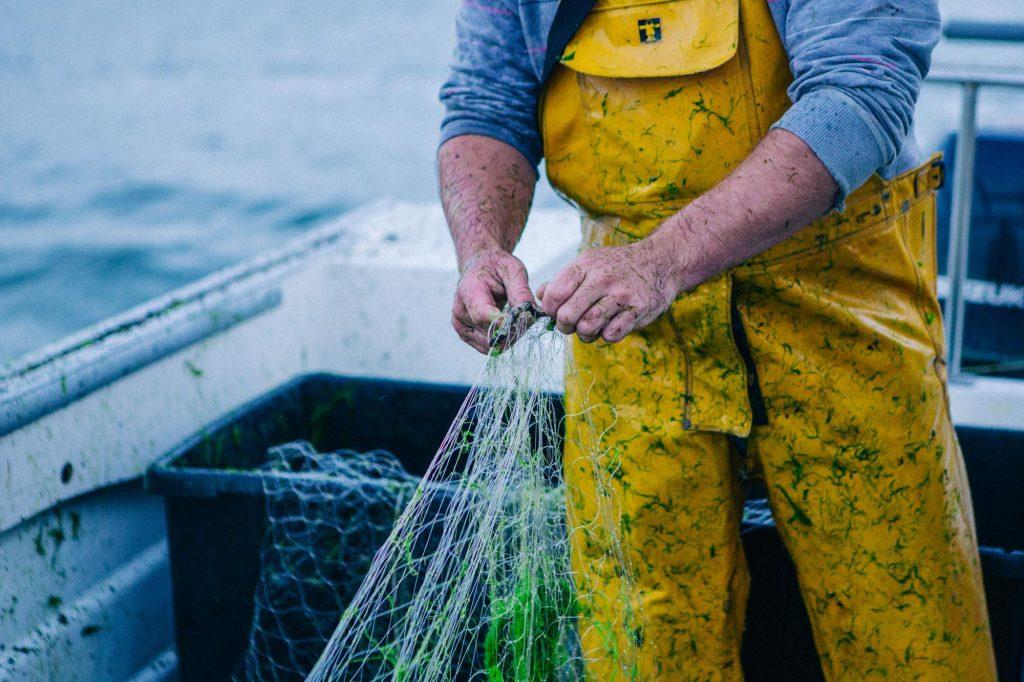 River Fal, Fisherman, Day Boat, Cornwall