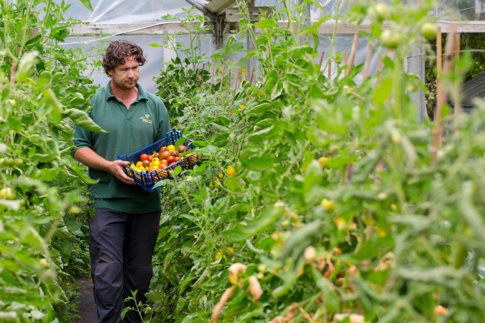 Garden Photography, Horticultural Photography, Le Manoir Garden Photography