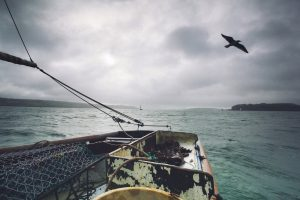River Fal, Oyster Fisherman, Traditional skills