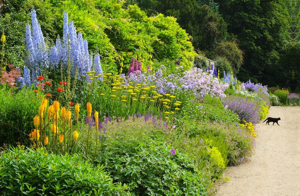 Herbaceous Border, Waterperry Gardens