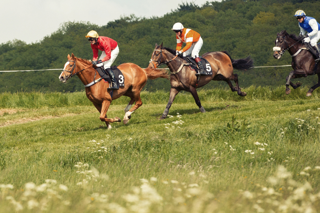 Horse Photography, Point to Point, National Hunt, Lawney Hill Racing, Horse Racing