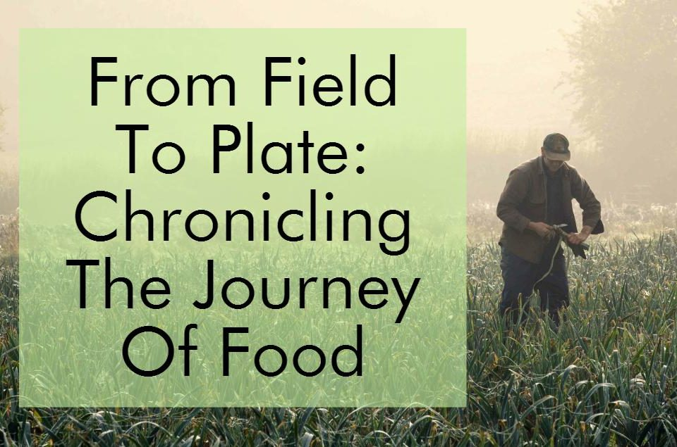 From Field To Plate: Chronicling The Journey Of Food Through Photography